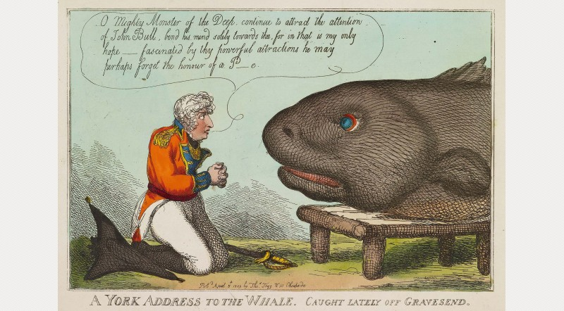 York Address to the Whale. In March 1809, a large whale was caught and viewed by hundreds of people in London. The Duke of York is shown here pleading with the whale to continue to distract public attention away from his own questionable conduct Royal Collection Trust / © Her Majesty Queen Elizabeth II 2013