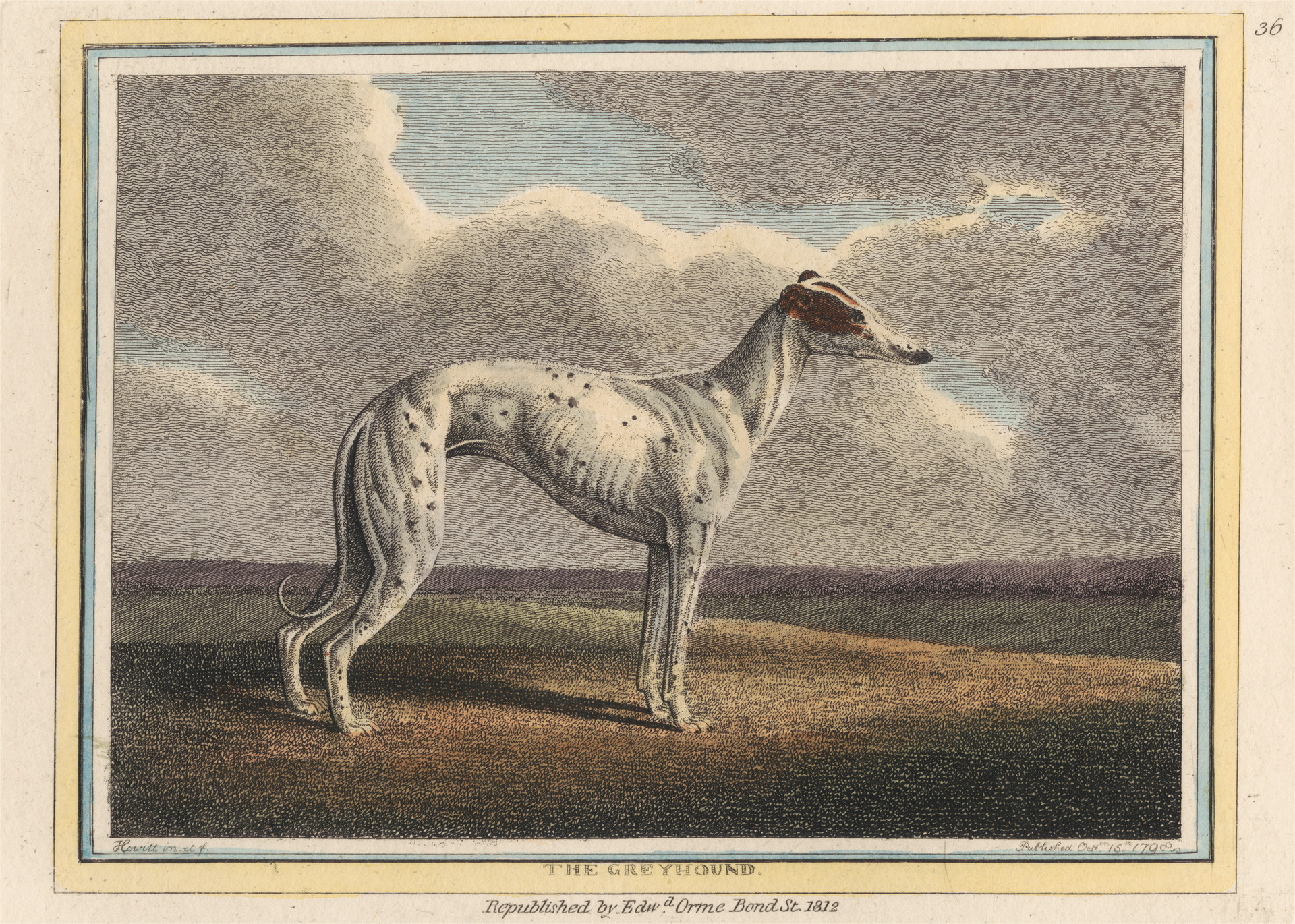 Five breeds of dog in the Georgian era